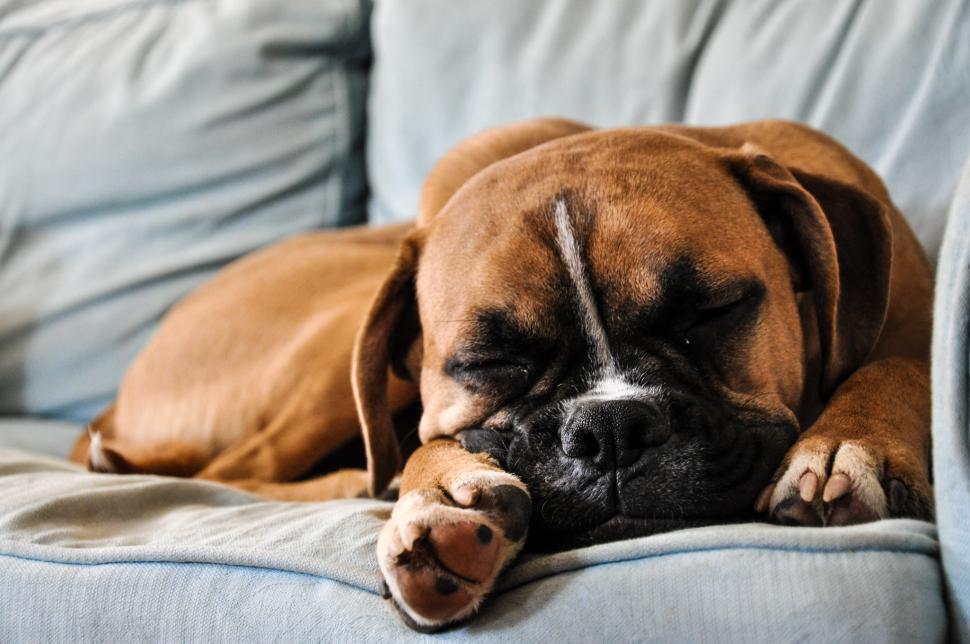 15 Ways To Get A Better Night Sleep